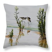 Stilts Hunting And Pecking Throw Pillow