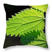 Stingers Throw Pillow