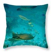 Stingray And Fish Throw Pillow
