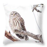 Stoic Throw Pillow