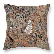 Stone Adornment Throw Pillow