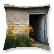 Stone Barn Neo Throw Pillow
