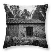 Stone Building Throw Pillow