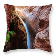 Stone Creek Fall Throw Pillow by Inge Johnsson