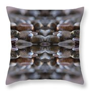 Stone Crossing 2 Throw Pillow
