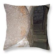 Stone Door Throw Pillow