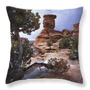 Stone Face Throw Pillow