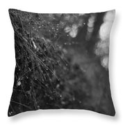 Stone Forest Trail Throw Pillow