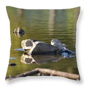 Stone Reflections Throw Pillow