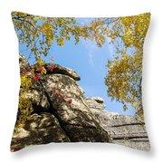 Stone Ridge Throw Pillow