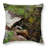 Stone Slid Away Throw Pillow