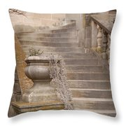 Stone Steps National Cathedral Throw Pillow