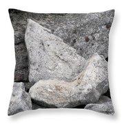Stone Tooth Throw Pillow