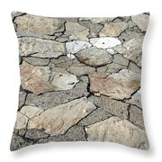Stone Walkway At Old Fort Niagara Throw Pillow