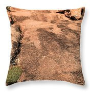Stoned Leap Frog Throw Pillow