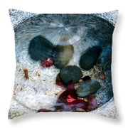 Stones And Fall Leaves Under Water-43 Throw Pillow
