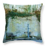 Stones And Water Throw Pillow