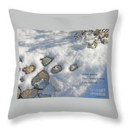Stones Waiting Throw Pillow