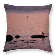 Stonington Sunrise Throw Pillow