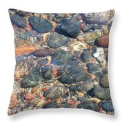 Stony Beauty Throw Pillow