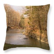 Stony Brook Throw Pillow