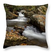 Stony Creek Falls Throw Pillow