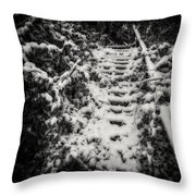 Stony Steps Covered With Snow Throw Pillow