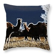 Stop And Stare V3 Throw Pillow