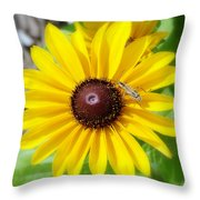 Stop Bug'n Me-2 Throw Pillow