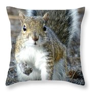 Stop Look And Listen Throw Pillow