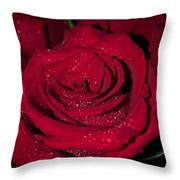 Stop To Smell The Roses Throw Pillow