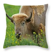 Stopped To Smell The Flowers Throw Pillow