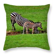 Stopping For A Drink Throw Pillow