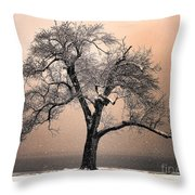 Stories To Tell Throw Pillow by Betty LaRue