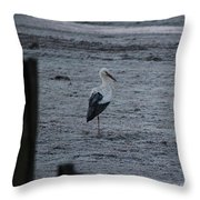 Stork On A Frosty Morning Throw Pillow
