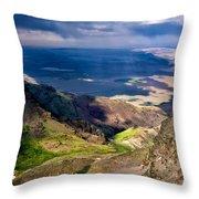 Storm Above The Alvord Desert Throw Pillow