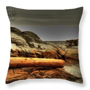 Storm Brewing Throw Pillow by Randy Hall