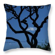 Storm Chaser Throw Pillow