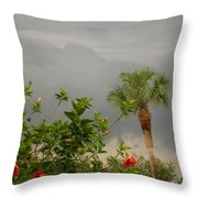 Storm Clouds And Flowers Throw Pillow