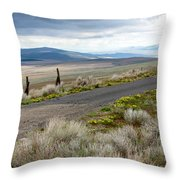Storm Clouds Gathering Over Washington Hills Throw Pillow