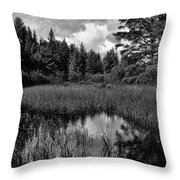 Storm Clouds Rolling In Over The Creek Throw Pillow