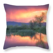 Storm Color Throw Pillow