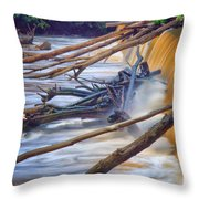 Storm Debris Throw Pillow