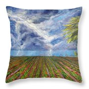 Storm Over Homestead Throw Pillow