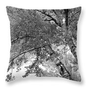 Storm Over The Cottonwood Trees - Black And White Throw Pillow
