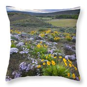Storm Over Wildflowers Throw Pillow
