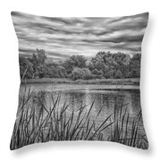 Storm Passing The Pond In Bw Throw Pillow