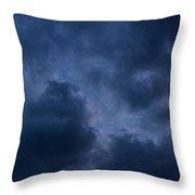 Storm Roars Throw Pillow