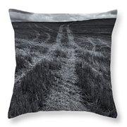 Storm Tracks Throw Pillow
