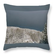 Storm's A'brewin' Throw Pillow